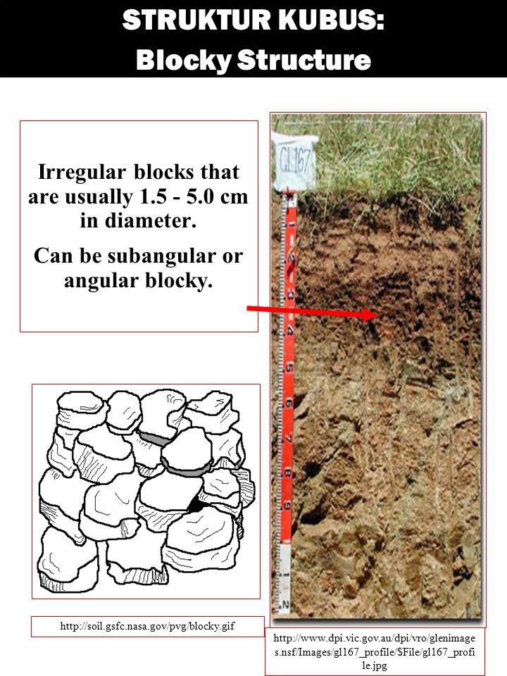 STRUKTUR KUBUS: Blocky Structure Irregular blocks that are usually 1.5 - 5.0 cm in diameter. Can be subangular or angular blocky. http://soil.gsfc.nas