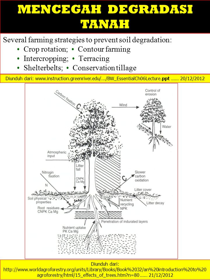 Several farming strategies to prevent soil degradation: Crop rotation; Contour farming Intercropping; Terracing Shelterbelts; Conservation tillage Diunduh dari: http://www.worldagroforestry.org/units/Library/Books/Book%2032/an%20introduction%20to%20 agroforestry/html/15_effects_of_trees.htm?n=80 …… 21/12/2012 MENCEGAH DEGRADASI TANAH Diunduh dari: www.instruction.greenriver.edu/.../BW_EssentialCh06Lecture.ppt …… 20/12/2012