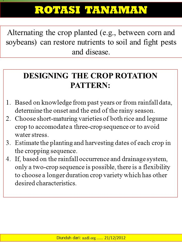 Alternating the crop planted (e.g., between corn and soybeans) can restore nutrients to soil and fight pests and disease.