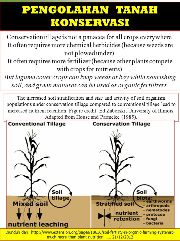 Conservation tillage is not a panacea for all crops everywhere. It often requires more chemical herbicides (because weeds are not plowed under). It of