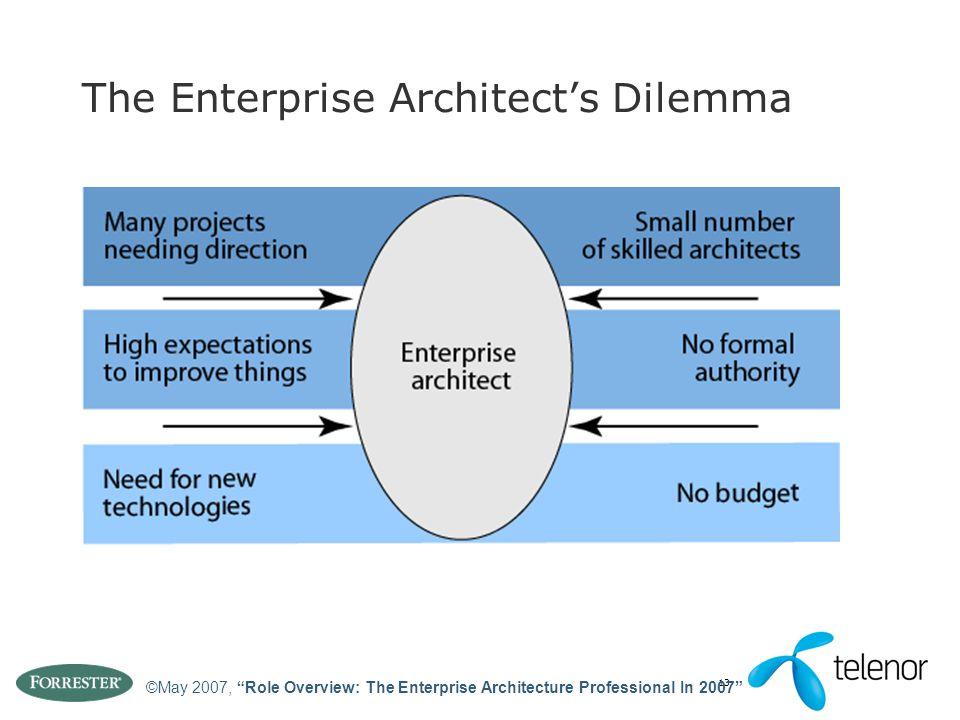 "13 The Enterprise Architect's Dilemma ©May 2007, ""Role Overview: The Enterprise Architecture Professional In 2007"""