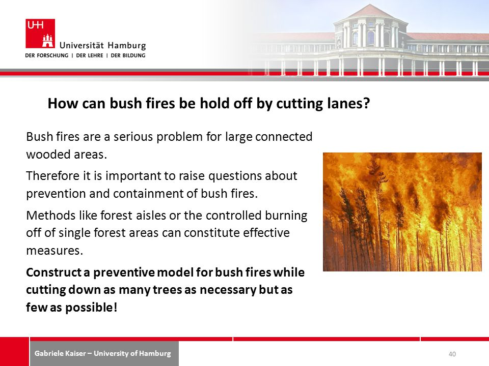 Gabriele Kaiser – University of Hamburg How can bush fires be hold off by cutting lanes.