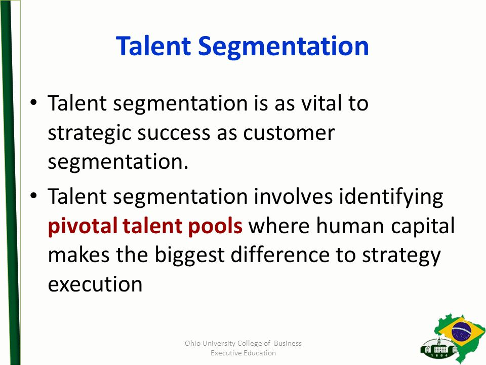 Talent Segmentation Talent segmentation is as vital to strategic success as customer segmentation.