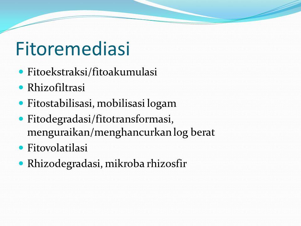Fitoremediasi Fitoekstraksi/fitoakumulasi Rhizofiltrasi Fitostabilisasi, mobilisasi logam Fitodegradasi/fitotransformasi, menguraikan/menghancurkan log berat Fitovolatilasi Rhizodegradasi, mikroba rhizosfir