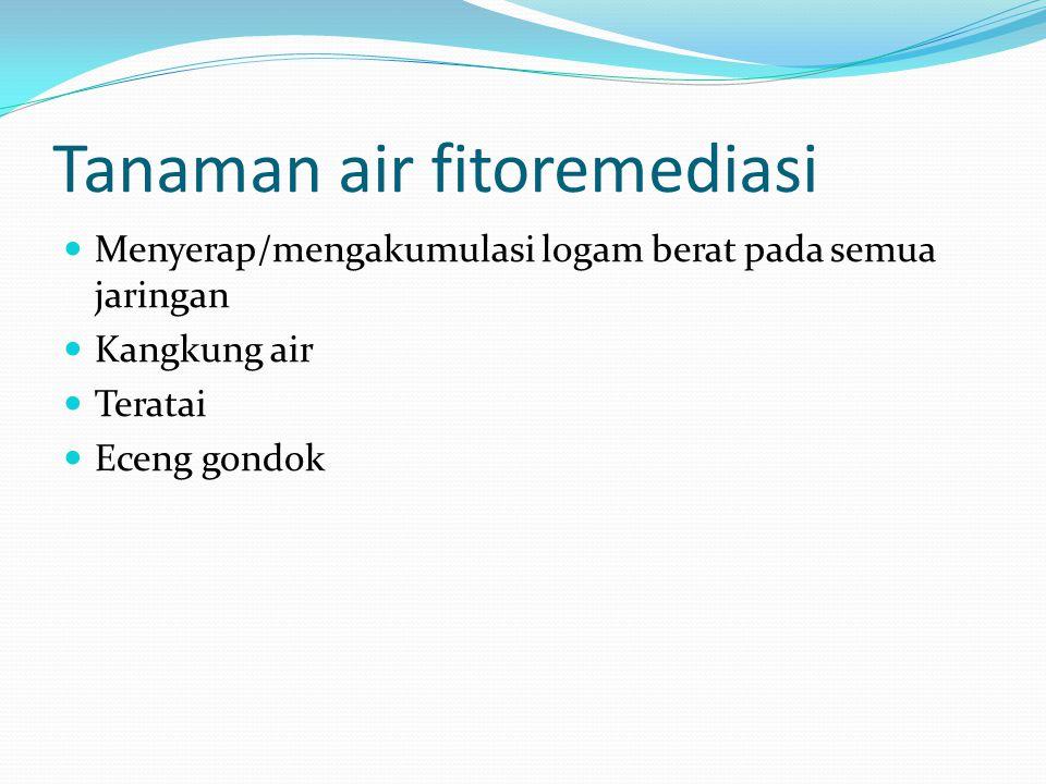 Tanaman air fitoremediasi Menyerap/mengakumulasi logam berat pada semua jaringan Kangkung air Teratai Eceng gondok