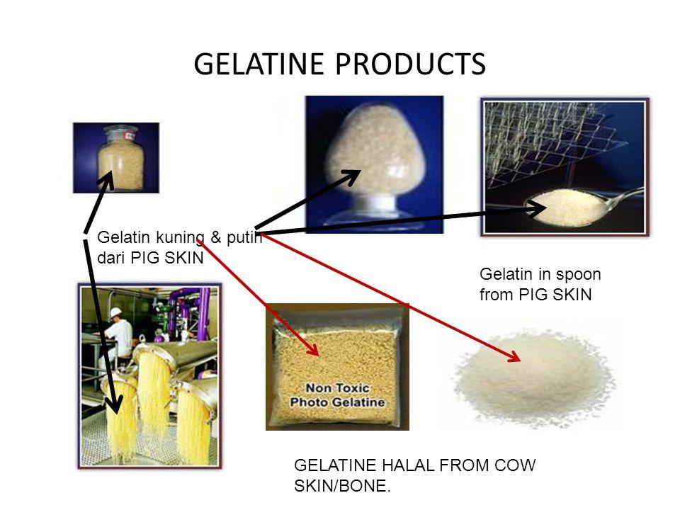 GELATINE PRODUCTS Gelatin kuning & putih dari PIG SKIN Gelatin in spoon from PIG SKIN GELATINE HALAL FROM COW SKIN/BONE.