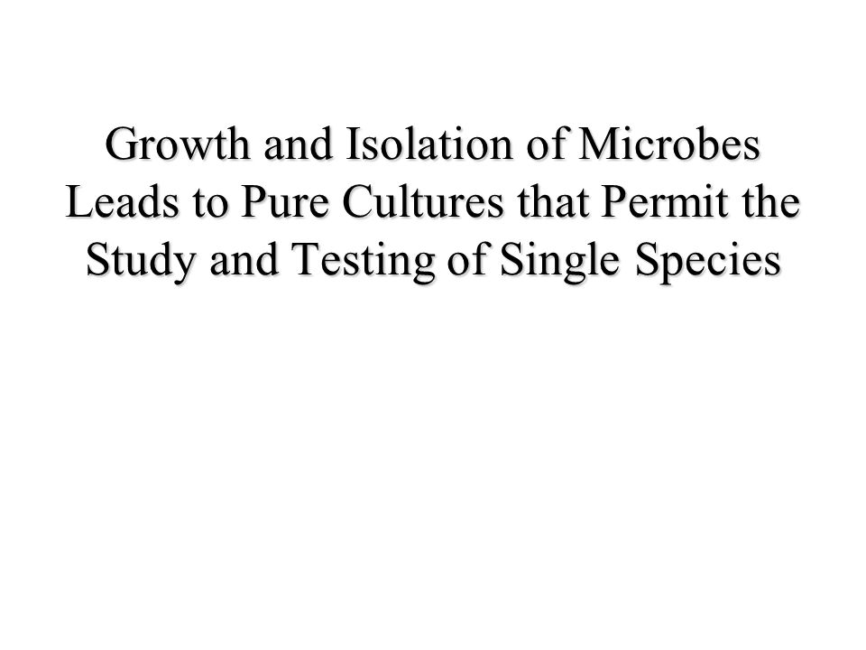 Growth and Isolation of Microbes Leads to Pure Cultures that Permit the Study and Testing of Single Species