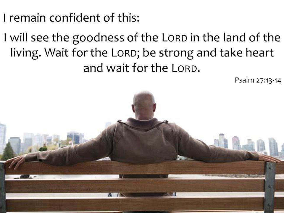 I remain confident of this: I will see the goodness of the L ORD in the land of the living.