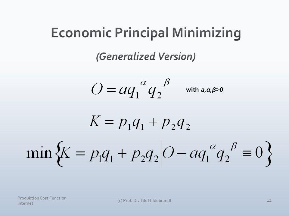Produktion Cost Function Internet (c) Prof. Dr. Tilo Hildebrandt 12 with a,α,β>0