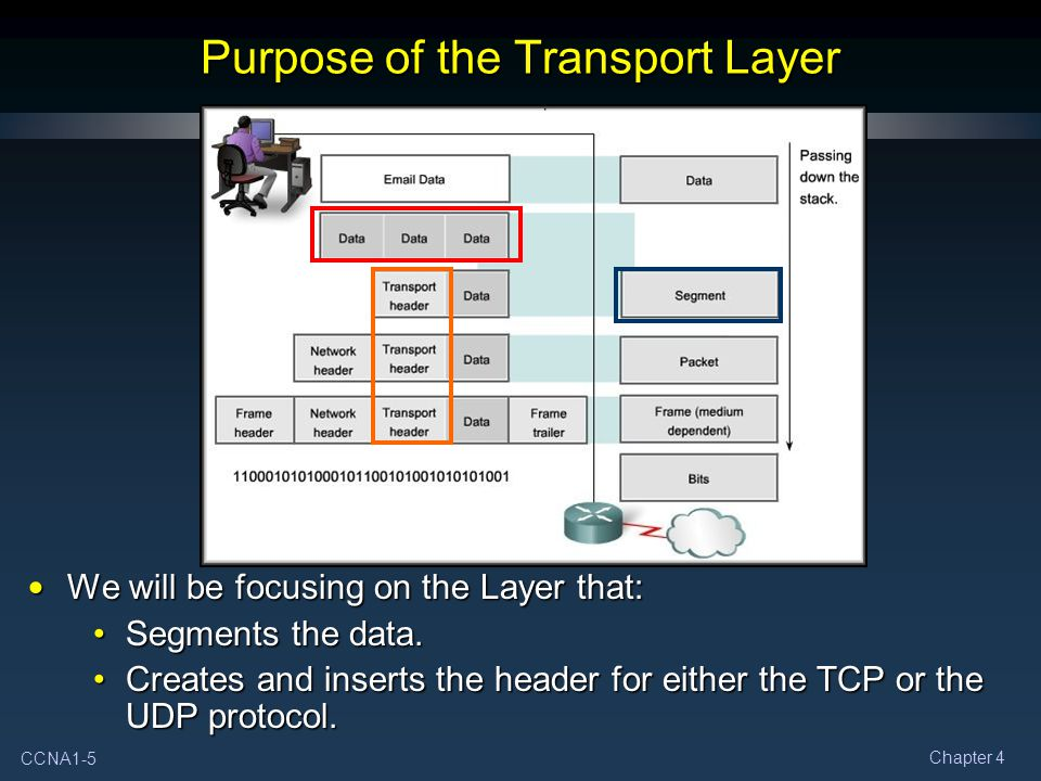 CCNA1-5 Chapter 4 Purpose of the Transport Layer We will be focusing on the Layer that: We will be focusing on the Layer that: Segments the data.Segments the data.