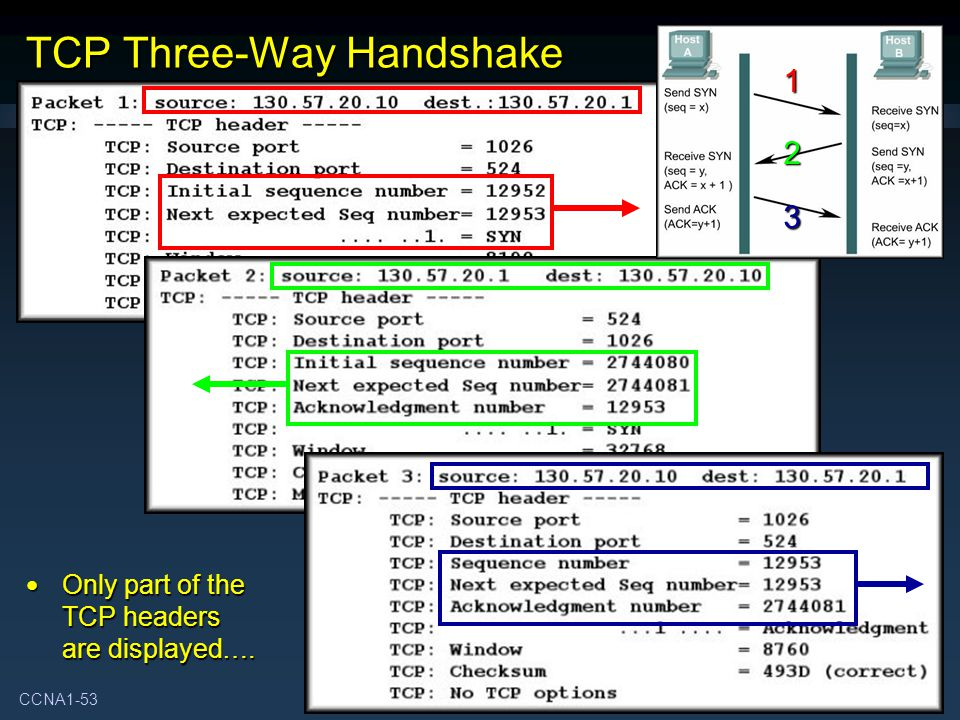 CCNA1-53 Chapter 4 TCP Three-Way Handshake Only part of the TCP headers are displayed….