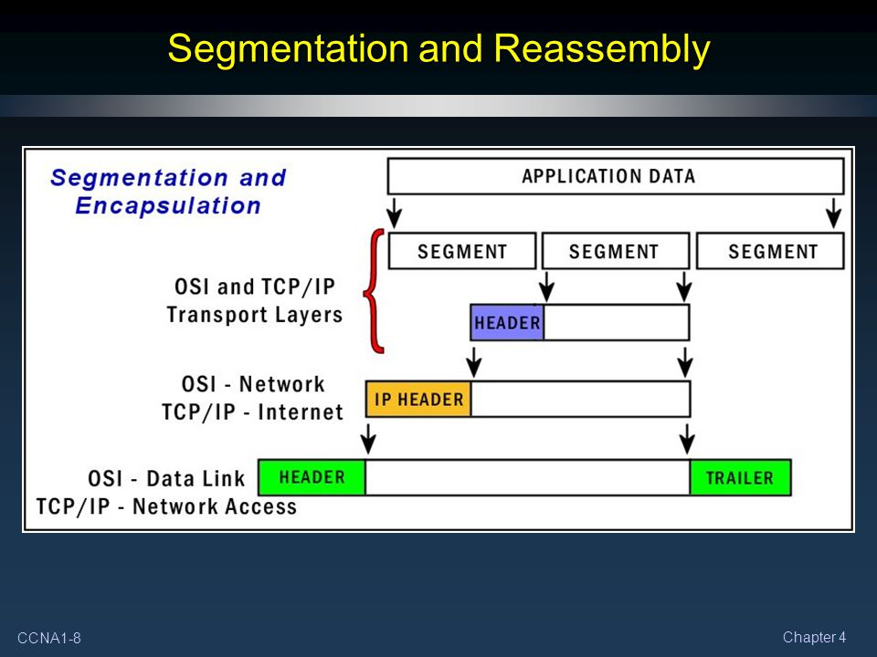 CCNA1-8 Chapter 4 Segmentation and Reassembly