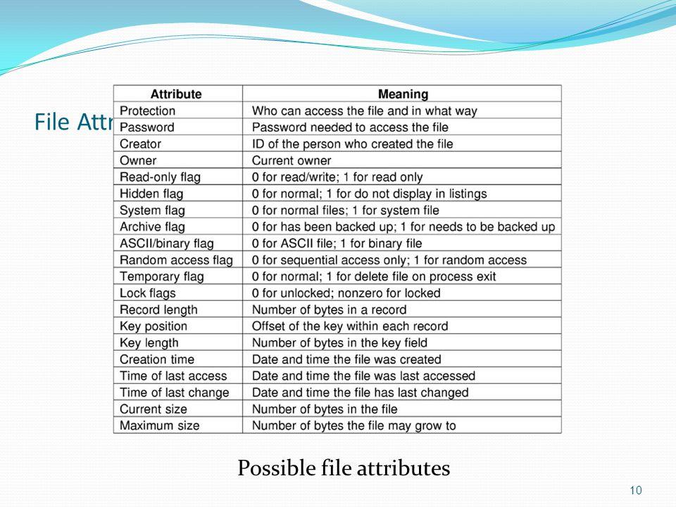 File Attributes Possible file attributes 10