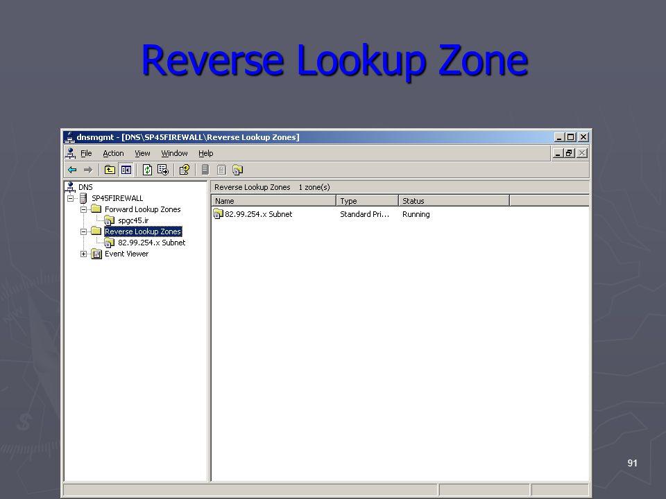 91 Reverse Lookup Zone