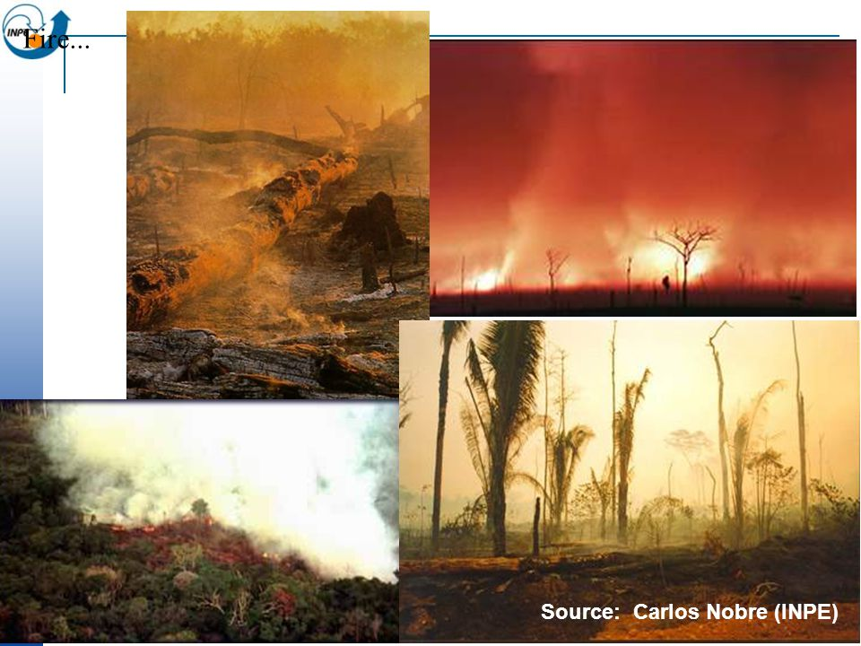 Fire... Source: Carlos Nobre (INPE)