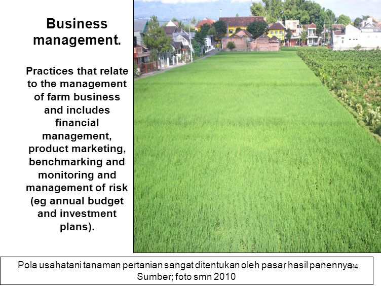 24 Business management. Practices that relate to the management of farm business and includes financial management, product marketing, benchmarking an