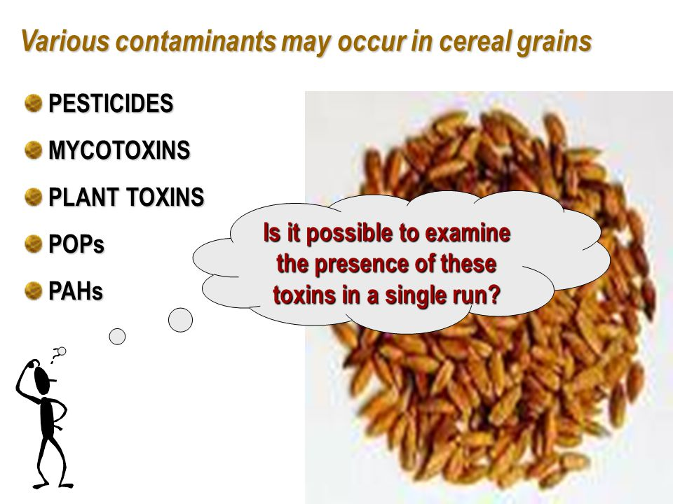 Various contaminants may occur in cereal grains Is it possible to examine the presence of these toxins in a single run.