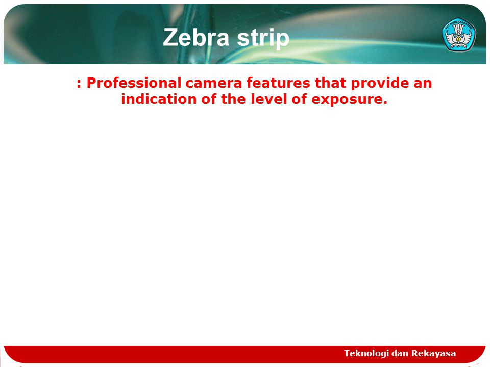 Zebra strip : Professional camera features that provide an indication of the level of exposure.