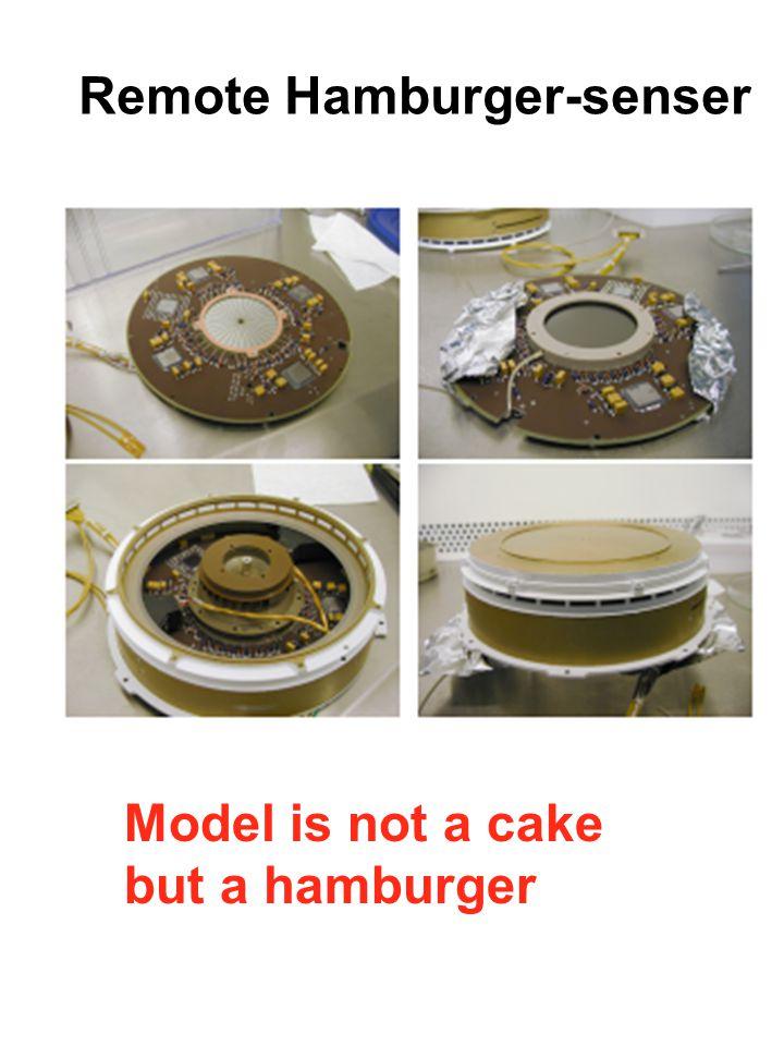 Remote Hamburger-senser Model is not a cake but a hamburger