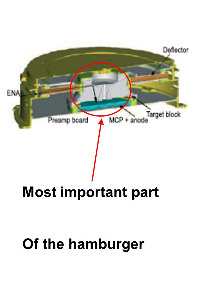 Most important part Of the hamburger