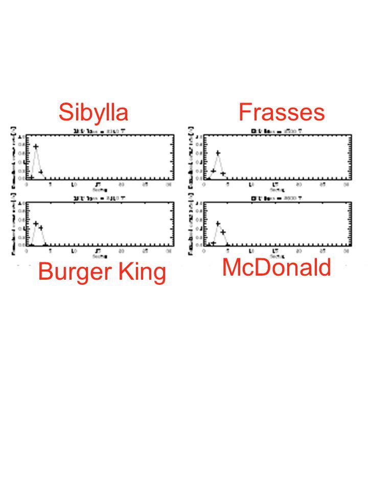 SibyllaFrasses Burger King McDonald