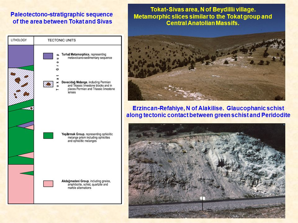 Paleotectono-stratigraphic sequence of the area between Tokat and Sivas Tokat- Sivas area, N of Beydilli i village.