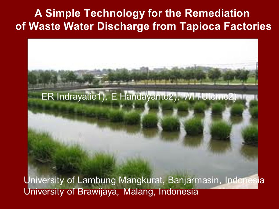 A Simple Technology for the Remediation of Waste Water Discharge from Tapioca Factories ER Indrayatie1), E Handayanto2), WH Utomo2) University of Lambung Mangkurat, Banjarmasin, Indonesia University of Brawijaya, Malang, Indonesia