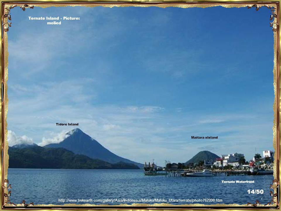 http://www.trekearth.com/gallery/Asia/Indonesia/Maluku/photo1106070.htm Mount Gamalama, Ternate Island - Picture: alitrisnapranoto/popsick/ 13/50
