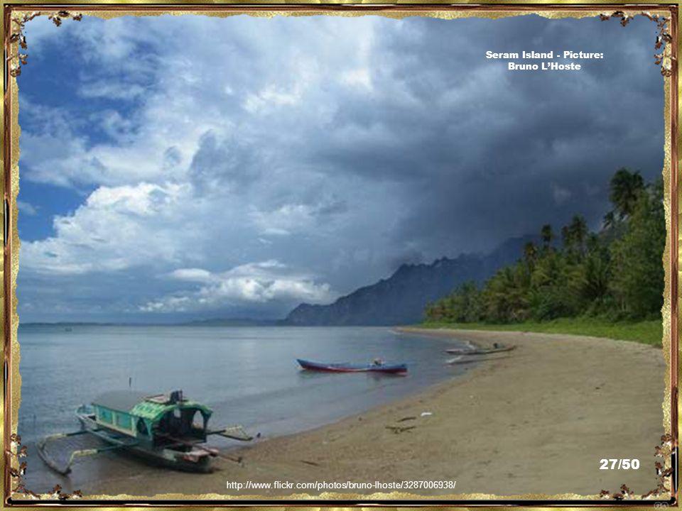 http://sbelen.wordpress.com/2008/11/17/from-bacan-with-love-swimming-children-on-the-beach-dari-bacan-dengan-cinta-anak-anak-berenang-di-pantai/ Bacan