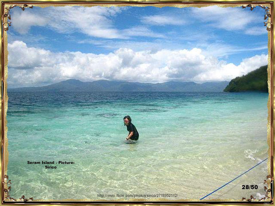 http://www.flickr.com/photos/bruno-lhoste/3287006938/ Seram Island - Picture: Bruno L'Hoste 27/50
