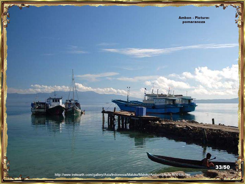 http://www.trekearth.com/gallery/Asia/Indonesia/Maluku/Maluku/Ambon/photo1011034.htm Ambon - Picture: pomarancza 32/50