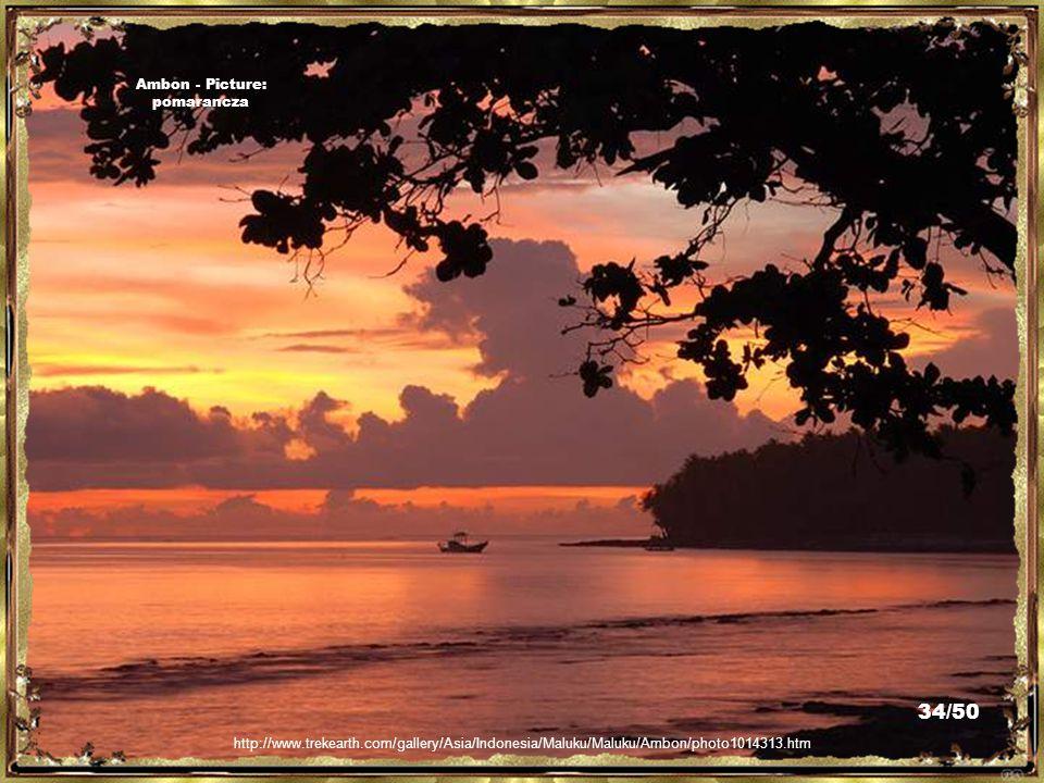 http://www.trekearth.com/gallery/Asia/Indonesia/Maluku/Maluku/Ambon/photo1010106.htm Ambon - Picture: pomarancza 33/50