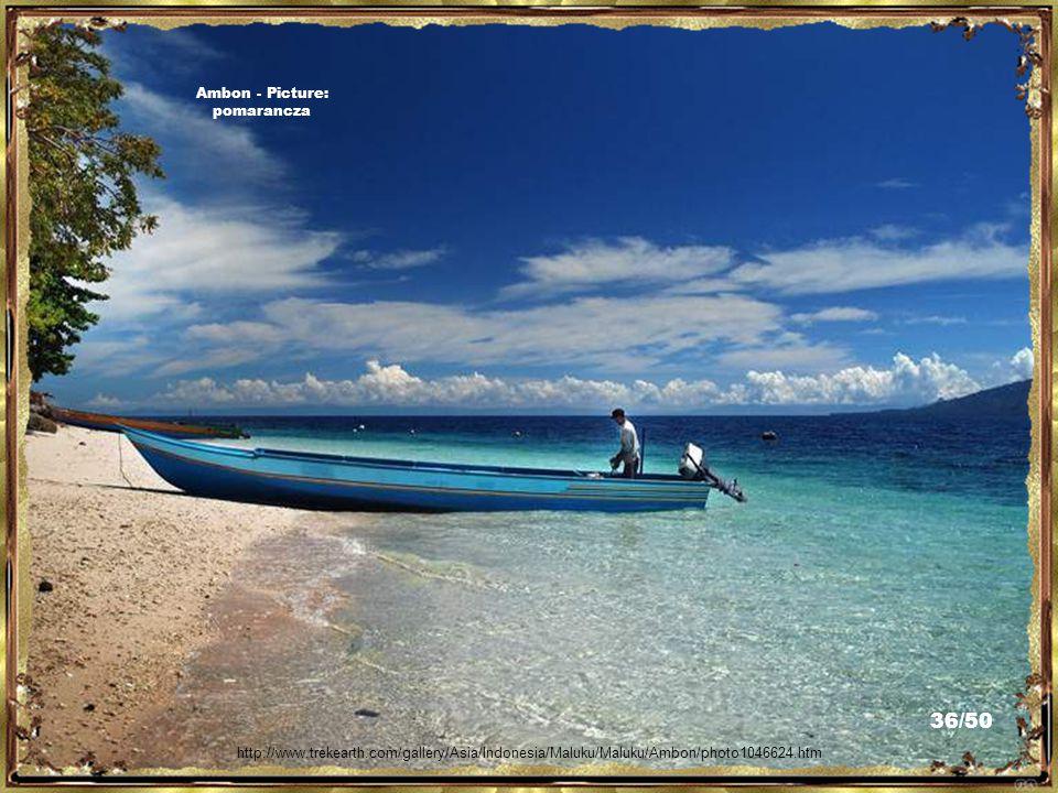 "Music: ""Ole Sio Sayange"" http://www.trekearth.com/gallery/Asia/Indonesia/Maluku/Maluku/Ambon/photo1013643.htm Ambon - Picture: pomarancza 35/50"