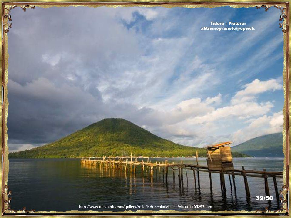 http://www.trekearth.com/gallery/Asia/Indonesia/Maluku/photo1104151.htm Tidore - Picture: alitrisnopranoto/popsick 38/50