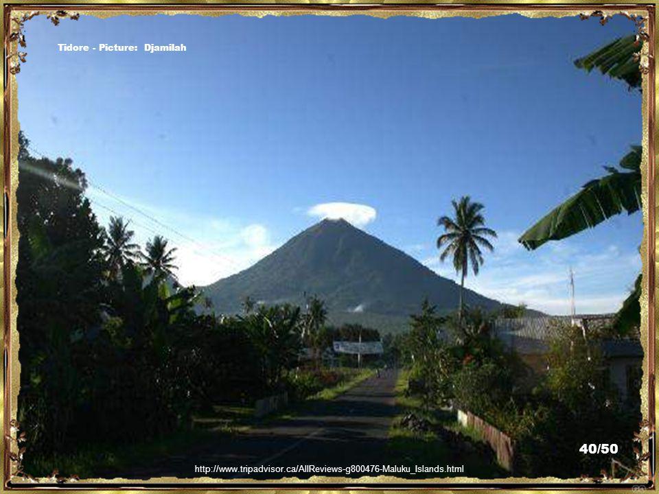 http://www.trekearth.com/gallery/Asia/Indonesia/Maluku/photo1105293.htm Tidore - Picture: alitrisnopranoto/popsick 39/50