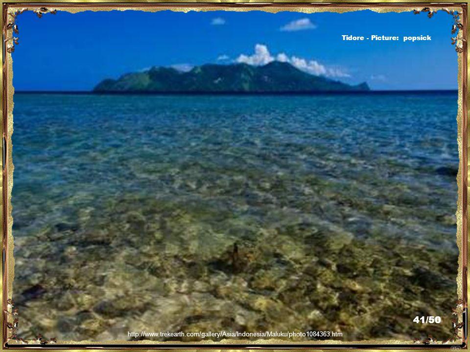http://www.tripadvisor.ca/AllReviews-g800476-Maluku_Islands.html Tidore - Picture: Djamilah 40/50