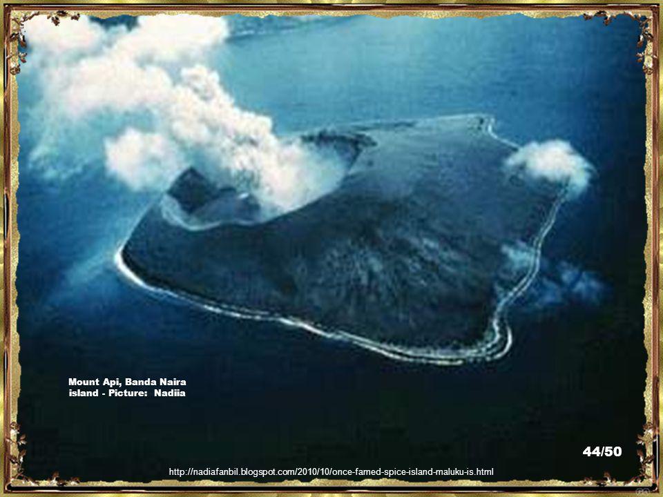 http://www.indonesiavolcanoes.com/about-us-indonesia-volcanoes-trekking.htm Mount Api, Banda Naira Island – Picture: Indonesia Volcanoes Trekking 43/5