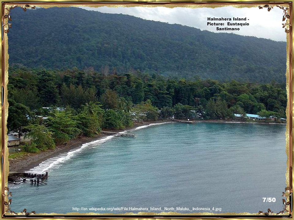 http://www.trekearth.com/gallery/Asia/Indonesia/Maluku/photo1205816.htm Ternate Island - Picture: popsick/ 17/50