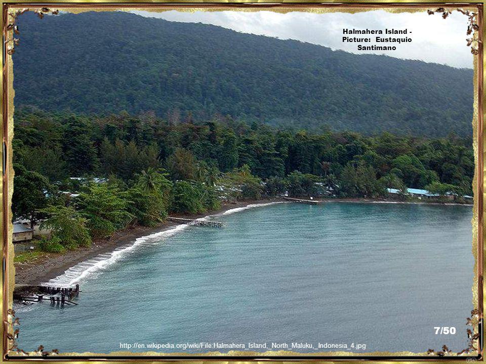 http://bangjotours.com/2009/12/morotai-island/ Morotai Island - Picture: Bangjo Tours 6/50