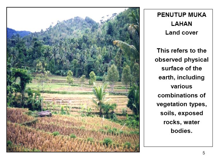 5 PENUTUP MUKA LAHAN Land cover This refers to the observed physical surface of the earth, including various combinations of vegetation types, soils, exposed rocks, water bodies.