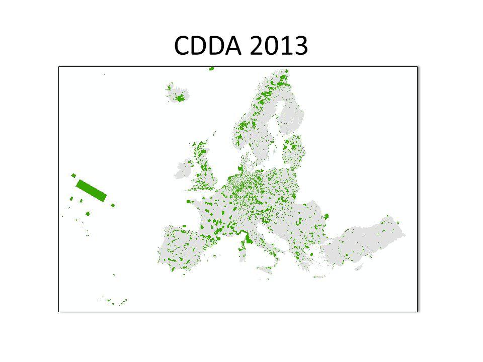 CDDA 2013