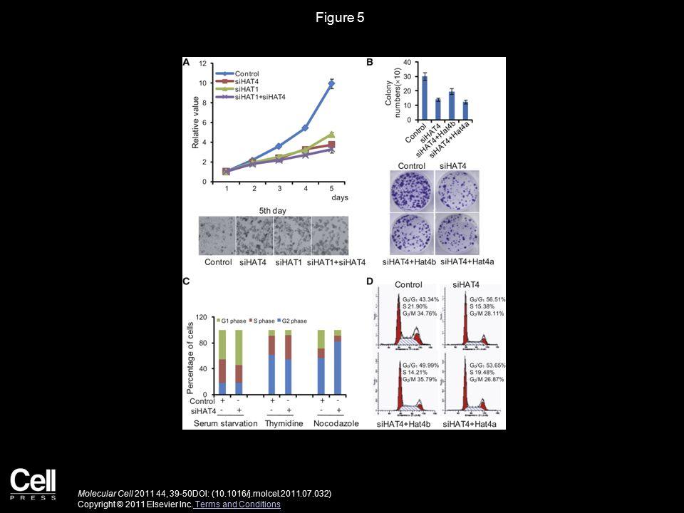 Figure 5 Molecular Cell 2011 44, 39-50DOI: (10.1016/j.molcel.2011.07.032) Copyright © 2011 Elsevier Inc.