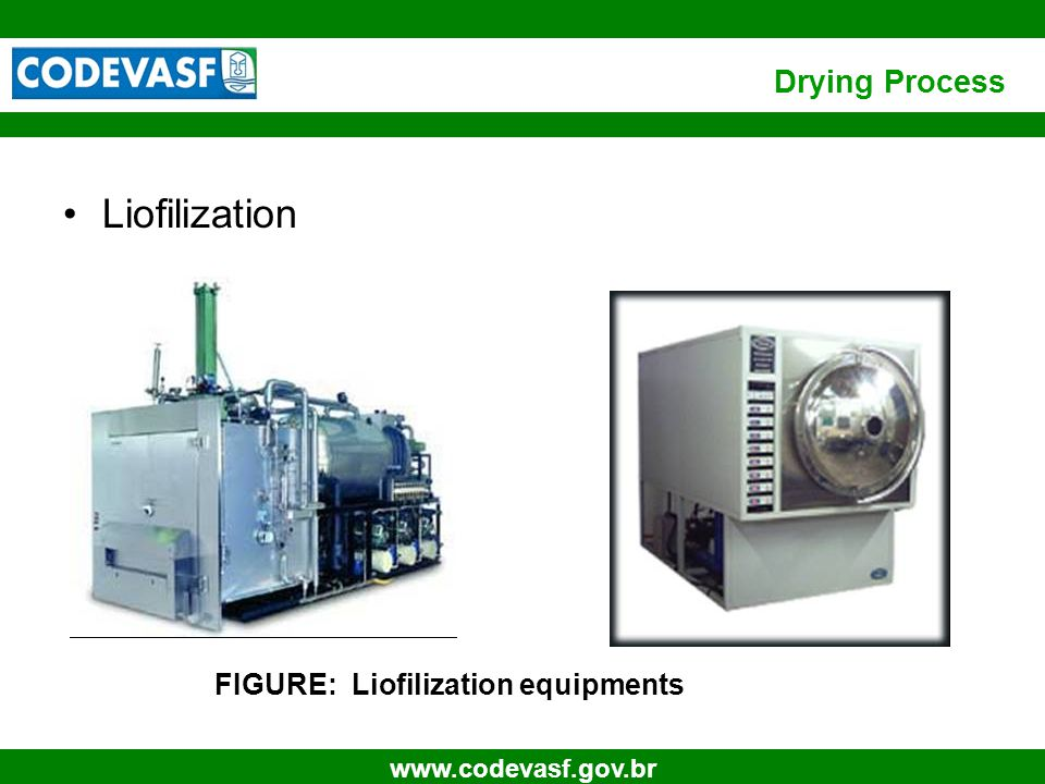 15 www.codevasf.gov.br Liofilization FIGURE: Liofilization equipments Drying Process