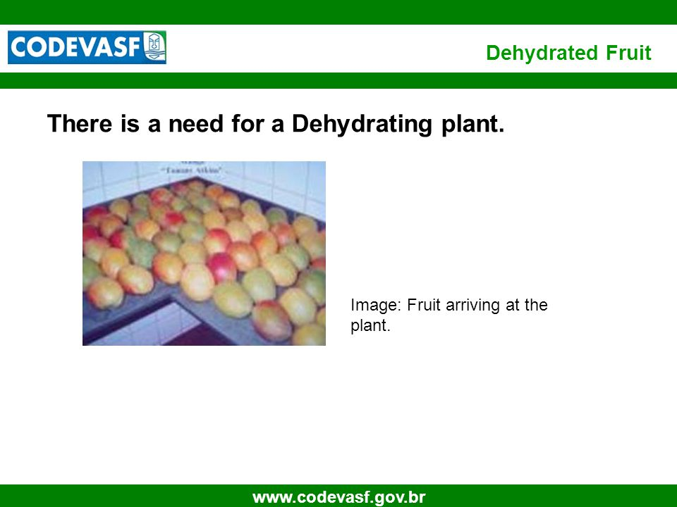 8 www.codevasf.gov.br Dehydrated Fruit There is a need for a Dehydrating plant. Image: Fruit arriving at the plant.