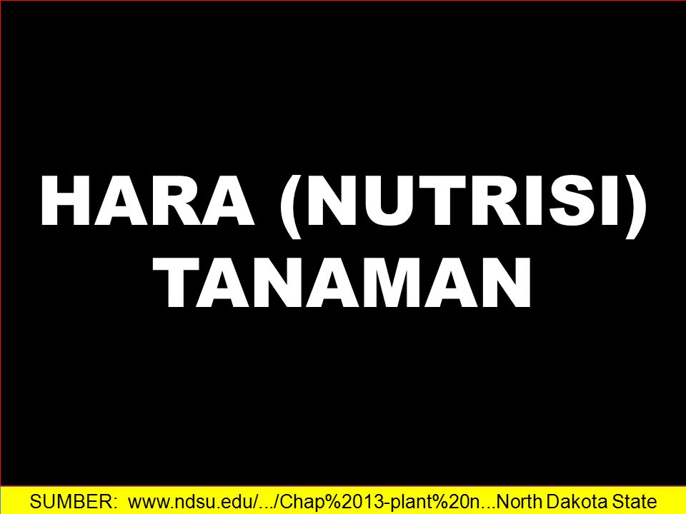 HARA (NUTRISI) TANAMAN 1.Hara Tanaman  Macronutrients  Micronutrients 2.Pupuk Kimia  Commercial Analysis  Elemental Analysis 3.Fertilizer Concentration Calculations  ppm  mM  Meq/liter 4.Aplikasi Pupuk  Pre-plant Application  Top Dressing  Liquid Feeding SUMBER: www.ndsu.edu/.../Chap%2013-plant%20n...‎North Dakota State University
