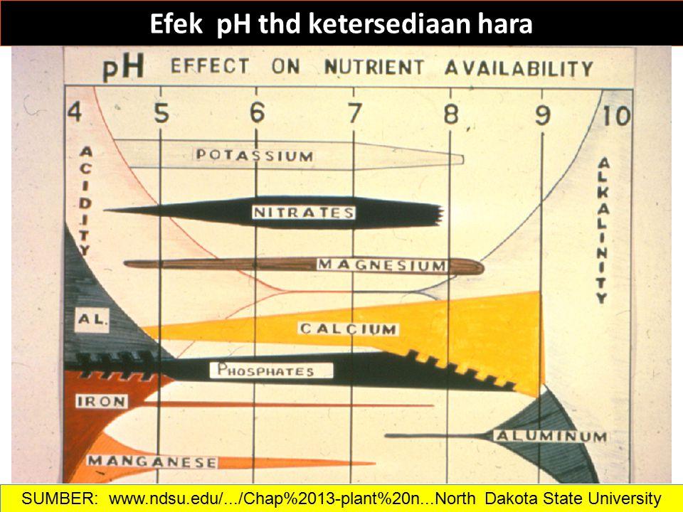 Efek pH thd ketersediaan hara SUMBER: www.ndsu.edu/.../Chap%2013-plant%20n...North Dakota State University