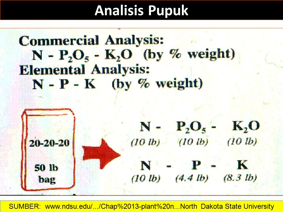 Analisis Pupuk SUMBER: www.ndsu.edu/.../Chap%2013-plant%20n...North Dakota State University