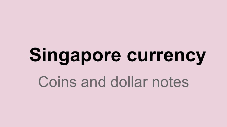 Singapore currency Coins and dollar notes