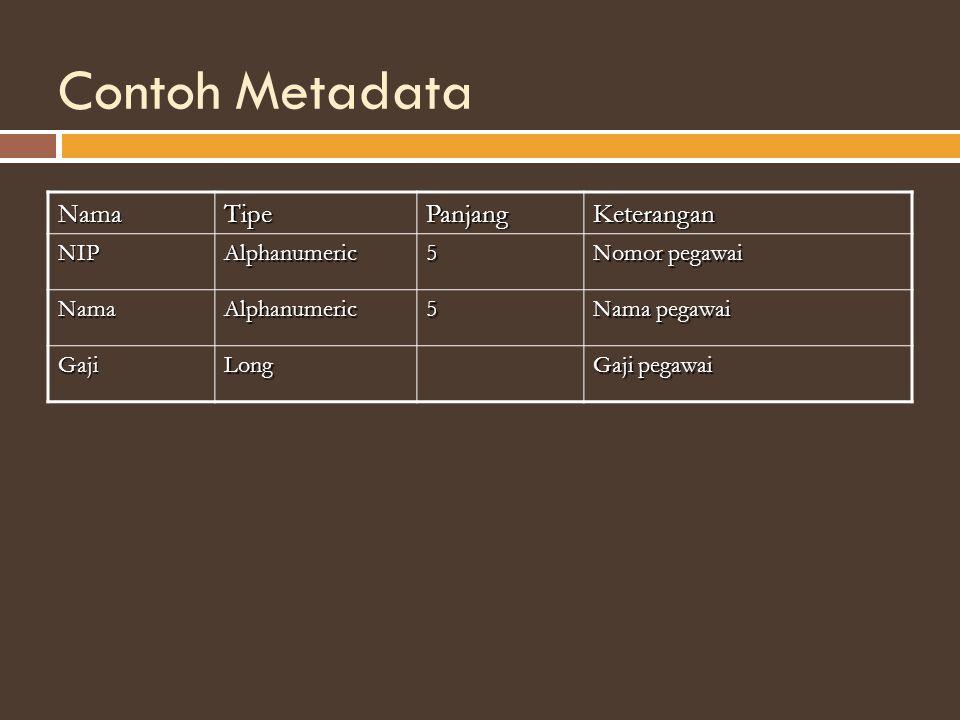 Contoh Metadata NamaTipePanjangKeterangan NIPAlphanumeric5 Nomor pegawai NamaAlphanumeric5 Nama pegawai GajiLong Gaji pegawai