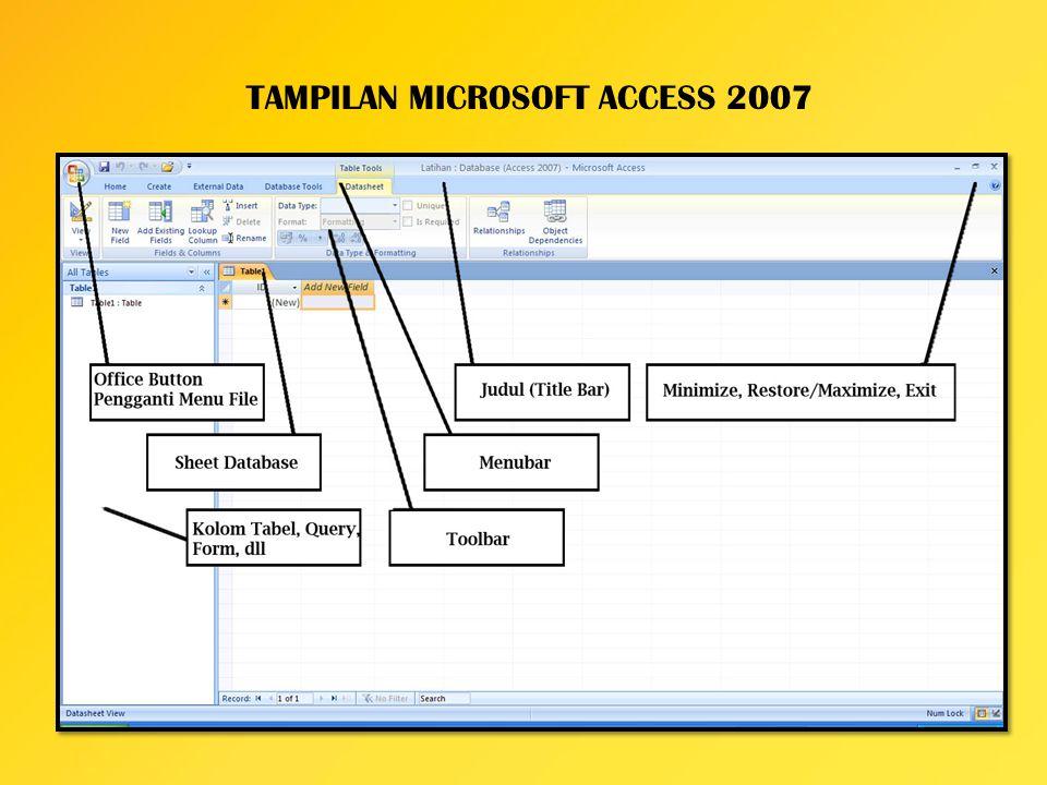 TAMPILAN MICROSOFT ACCESS 2007
